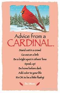 Advice From A Cardinal