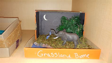 biome project  smiths  grade