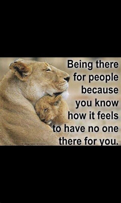 lioness quotes   quotesgram