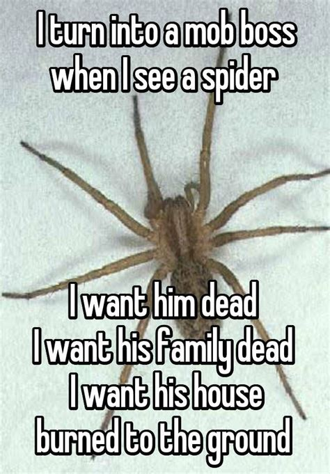 I Saw A Spider Meme - 577 best images about true me on pinterest migraine quotes depression and my mom