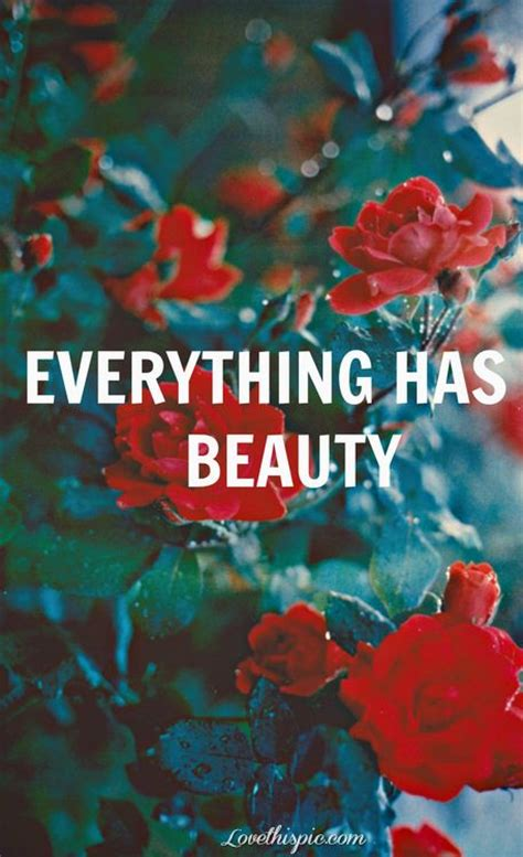 beauty life quotes quotes photography quote
