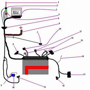 Opel Astra G Ecu Wiring Diagram Wiring Diagram