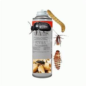 Teppichkäfer Larven Bekämpfen : ungeziefer raumvernebler spray bek mpft parasiten ~ Lizthompson.info Haus und Dekorationen
