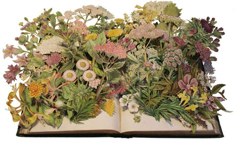 discarded books transformed  exploding  collages