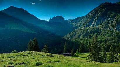 Wallpapers Mountain Trees Landscape Valley Pine Grass
