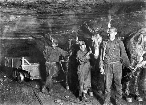 miners mules working   coal  gary west virginia