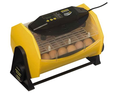 The Best Incubator For Chicken Eggs - Our Top 7 Picks