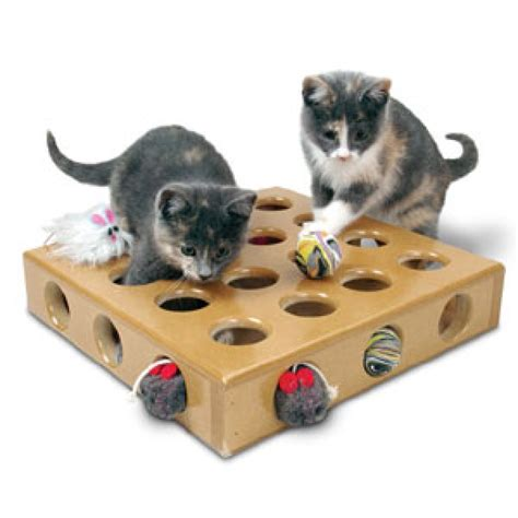 cat toys smartcat peek a prize box