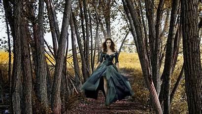 Forest Walking Path Gothic Dark Wallpapers Threshold