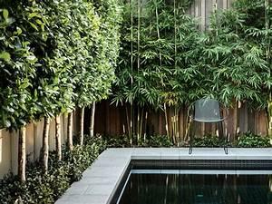 Balkon Sichtschutz Pflanzen : sichtschutz pflanzen terrasse ~ Indierocktalk.com Haus und Dekorationen