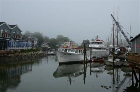 Boat Tours Kennebunkport Maine by Boat In Kennebunkport Harbor Picture Of Seagull Seaside