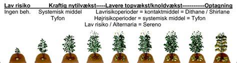 Figur 8. Strategiforslag til svampebehandling i kartofler ...