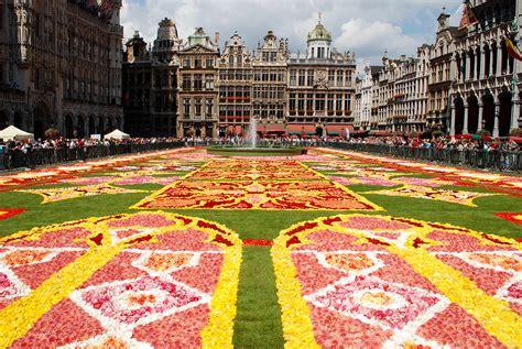 cuisiner un choux fleur tapis de fleurs bruxelles 28 images reportage tapis de