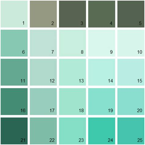 benjamin paint color green mint green color swatch www pixshark images