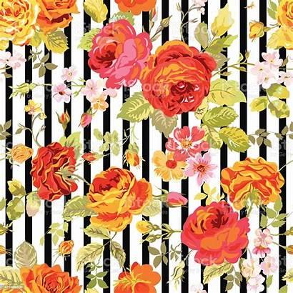 Floral Background Pattern Seamless Vector Illustration Textile