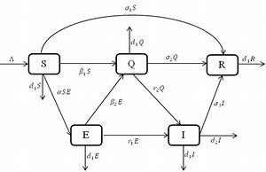Transfer Diagram Of The Seqir Covid