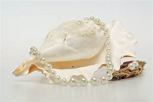 jewelry photography, pearl necklace | Flickr - Photo Sharing!
