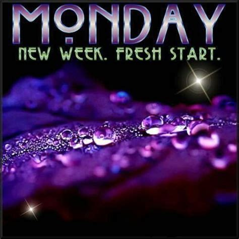 monday  week fresh start pictures