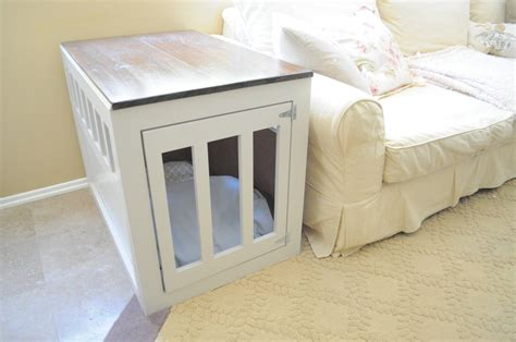 dog owner  learn   diy pet projects
