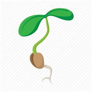 Bean, cartoon, leaf, plant, seed, sign, sprout icon | Icon ...