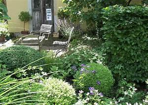 Buxbaum Schneiden Wann : buchsbaum buchbaumkugeln im schattengarten formgeh lze ~ Lizthompson.info Haus und Dekorationen