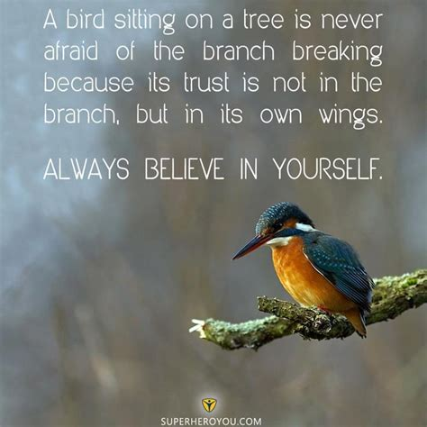 a bird sitting on a tree is never afraid of the branch