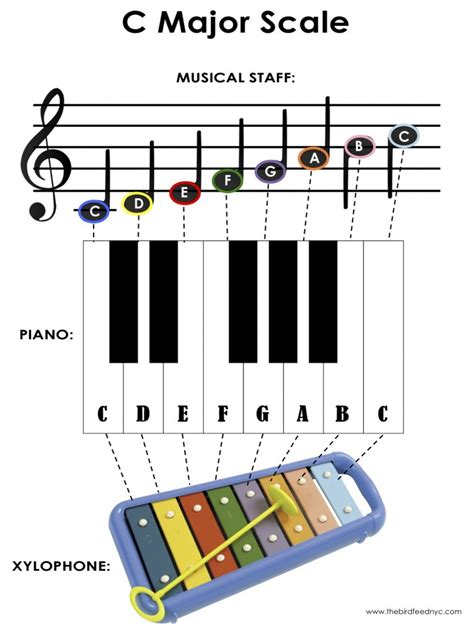 activity for the c major scale on the piano and