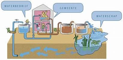 Water Werkstuk Spreekbeurt Plaatjes Voor Afvalwater Zuiveren