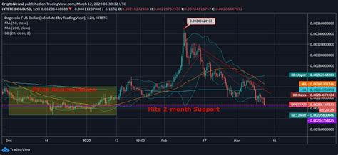 Why Is Dogecoin Going Up And Will It Continue Insane ...