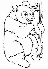 Bamboo Coloring Pages sketch template