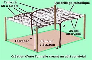 creation d39une tonnelle agreable a l39aide de kiwi ou With allee de jardin originale 3 allee de jardin en bois esthetique et facile 224 faire