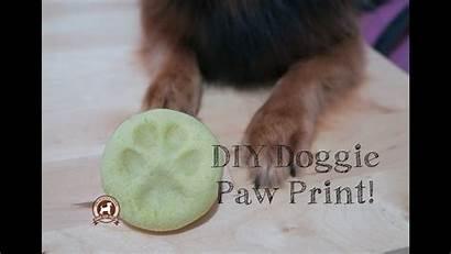 Paw Dough Salt Recipe Diy