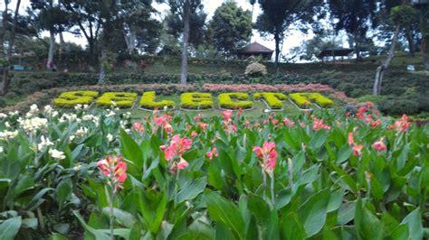 sejuta pesona wisata bunga  selecta batu ila rizky