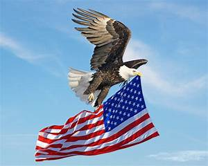 Eagle flying American Flag by xybutterfly on DeviantArt