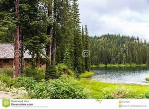 Blockhaus Am See : blockhaus im kiefern wald durch see stockbild bild von unterkunft landschaften 37401407 ~ Frokenaadalensverden.com Haus und Dekorationen