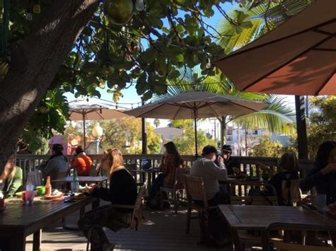 Treehouse coffee is located in the beautiful scarborough faire shopping village in duck, nestled we hope you'll stop in and visit treehouse coffee and rope ladder kitchen the next time you're in. Krakatoa is a Cozy Treehouse Coffee Shop In Southern California