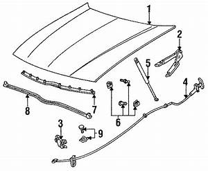 Ford Taurus Hood Stop Buffer  Upper  Lower   Front  On