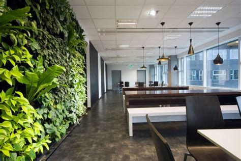 green office interior design companies incorporate biophilic design in their