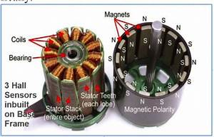 Presents Stator And Rotor Sections Of Motor  Bldc Motor Is
