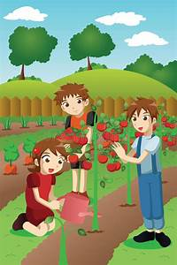 Kids Planting Vegetables And Fruits Stock Vector