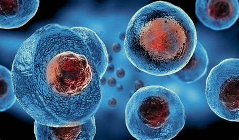 stem cell research  untreatable stds
