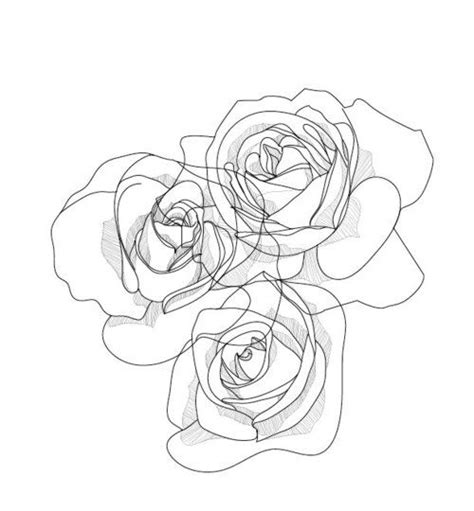 drawing roses artphotography