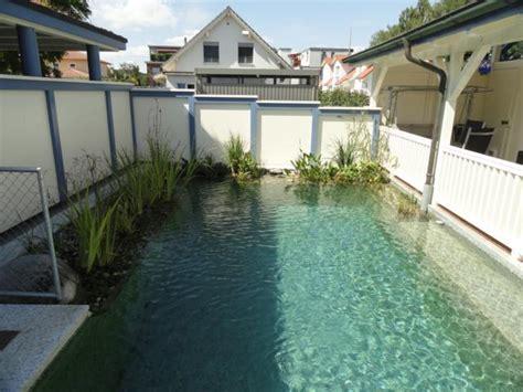 naturpool oder schwimmteich graf gartenbau schwimmteich gmbh bolligen bern naturpool badeteiche und schwimmteiche