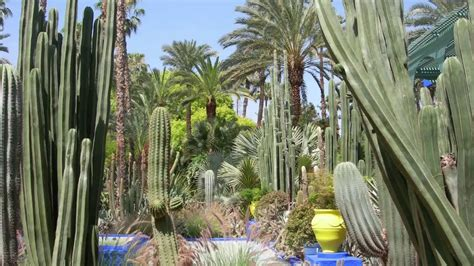 Botanischer Garten In Marrakesch Youtube