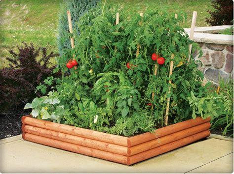 Small Raised Bed Vegetable Garden Design Ideas
