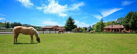 farm horse insurance