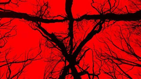 blair witch review ign