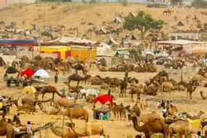 pushkar mela 2016 here 39 s what 39 s happening in pushkar fair this year india