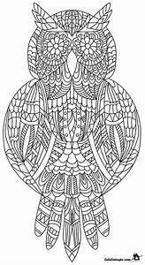 Jeux Anti Stress : coloriage adulte un hibou lulu la taupe jeux gratuits ~ Melissatoandfro.com Idées de Décoration
