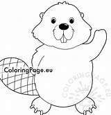 Beaver Cute Coloring Animal sketch template